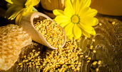 Как пчелният прашец помага за забременяване?