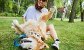 Признаци, че кучето ви е здраво и щастливо