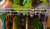 Любопитни факти за чистенето вкъщи