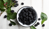 Богати на фибри храни, полезни за червата и храносмилането