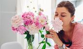 Кое е цветето, което символизира любов, късмет и сила?