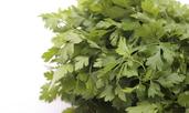 Лековити билки, полезни за бъбреците