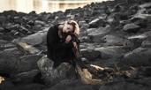 5 сигурни симптома на депресия