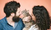 Защо котките ближат стопаните си?