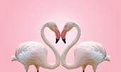 Любовен хороскоп за 7 – 13 май 2018