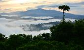 Магическите ритуали на остров Борнео