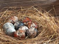 Боядисване на великденски яйца с лучени люспи и боя